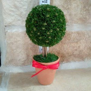 Mini Ball Topiary